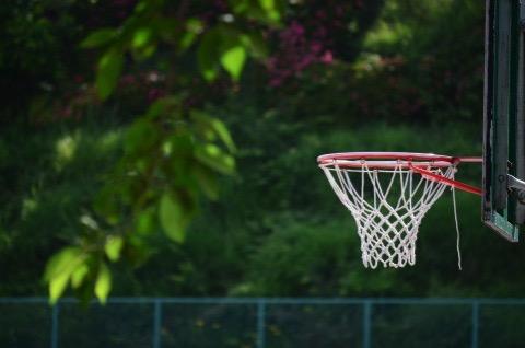 スポーツはシーズン制